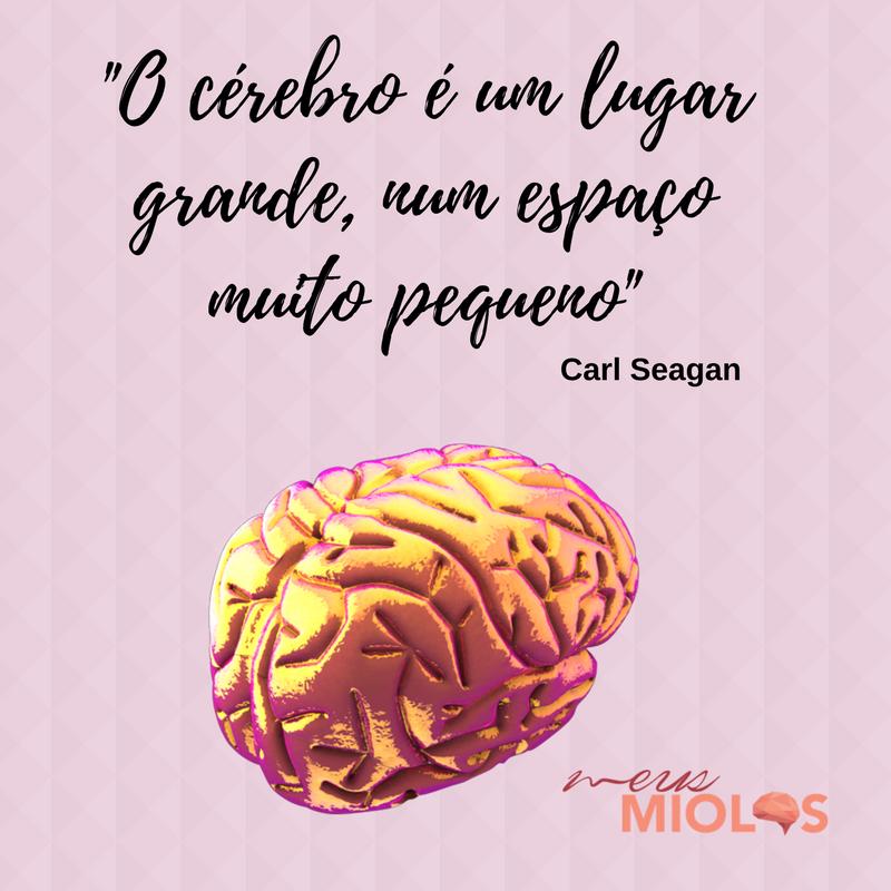 O cérebro é um lugar grande
